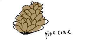 Pinecone copy