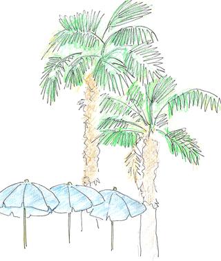 Palmiyesemsiye